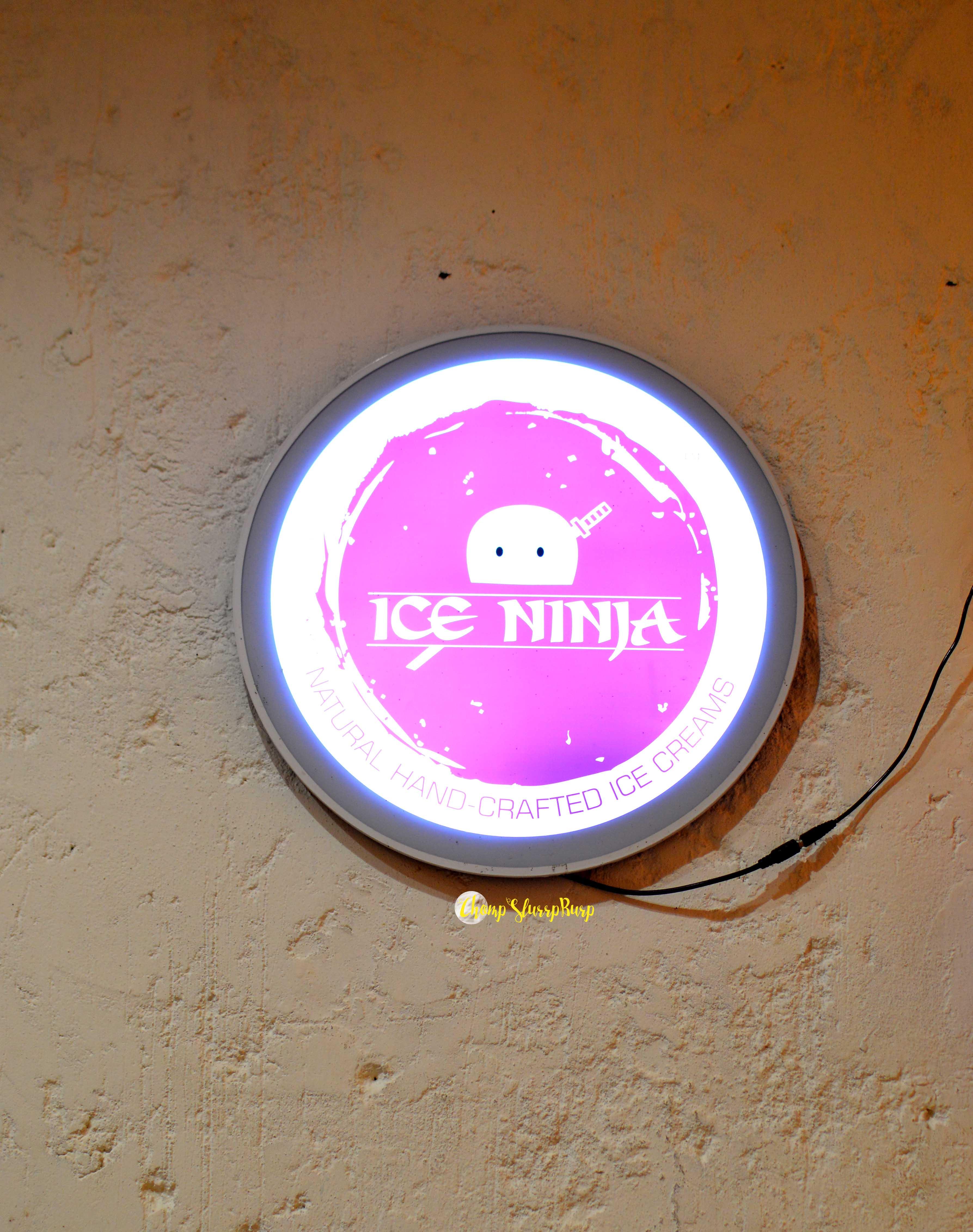 Ice Ninja (12)